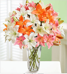 The arrangement of color can give the room a warm feeling